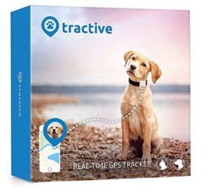 tracker gps per cani e gatti